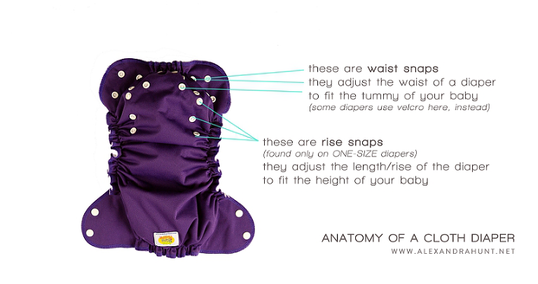 ANATOMY OF A CLOTH DIAPE