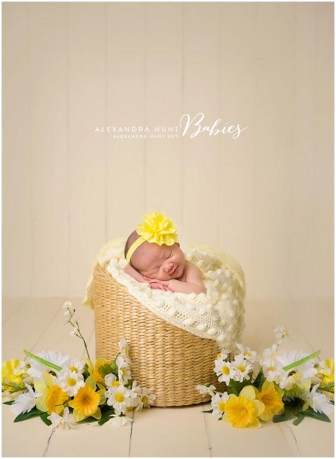 bumble bee baby, newborn studio photographer, best langley newborn portraits, ALEXANDRA HUNT PHOTOGRAPHY