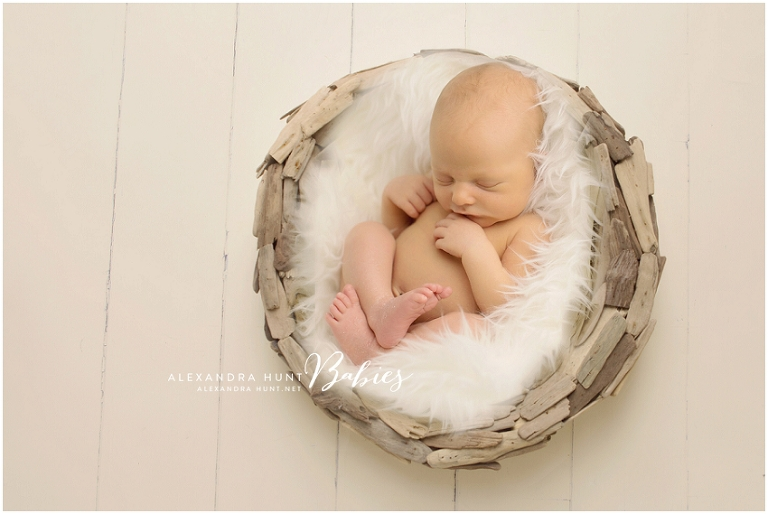 Vancouver studio newborn photographer, Alexandra Hunt Photography