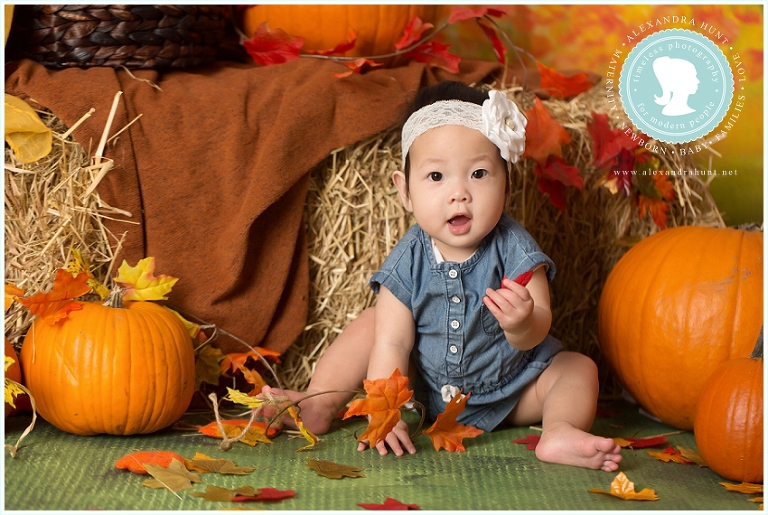 Langley baby photographer, studio, baby girl, Alexandra Hunt Photography, six month portraits