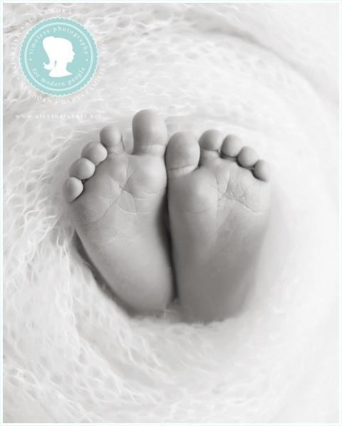 Langley Fraser Valley newborn photographer in studio, Alexandra Hunt Photography