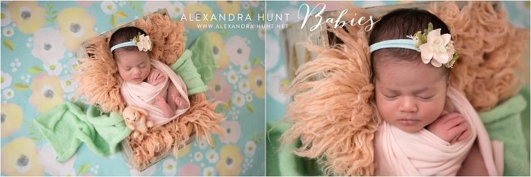 Alexandra Hunt Photograpahy, Langley newborn baby maternity family photography, http://www.alexandrahunt.net